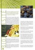 biodiversité en belgique - Page 6