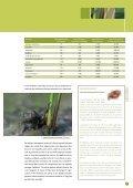 biodiversité en belgique - Page 7