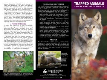 TRAPPED ANIMALS - Animal Welfare Institute