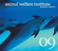 animal welfare institute animal welfare institute