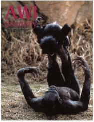 Global Development - Animal Welfare Institute
