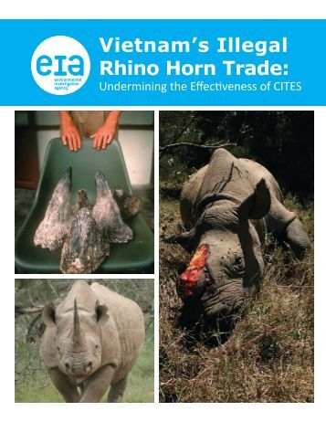 Vietnam's Illegal Rhino Horn Trade: - Environmental Investigation ...
