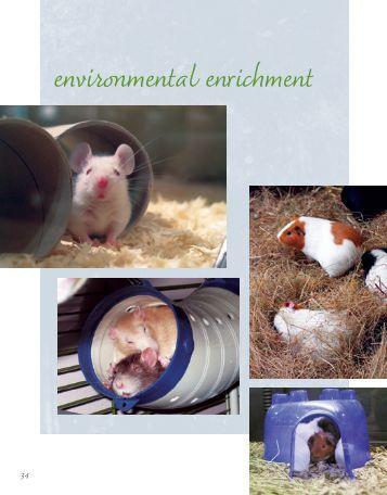 environmental enrichment - Animal Welfare Institute