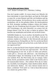 Gott in allem und immer finden von P. Herbert Federspiel SAC ...