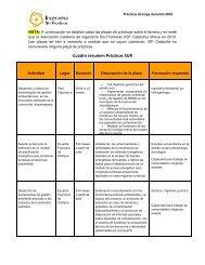Estudio social para la definición de un modelo de planificación ... - ISF