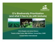 Biofuels and Biodiversity Priorities -- CI - Library - Conservation ...