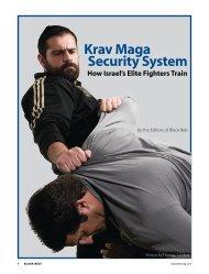 Krav Maga Security System - Danny Lane Martial Arts Website