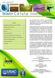 Boletín trimestral informativo del Centro de Estudios ...