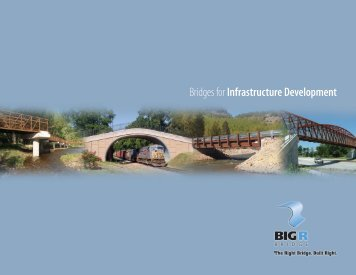 Download the AIL Bridges for Distinctive Development Brochure