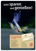 Der Aquaristik - Zoobetz.de - Page 2