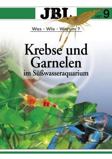 Krebse Und Garnelen - Tierbedarf Belitz