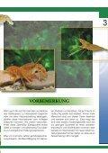 Krebse Und Garnelen - Tierbedarf Belitz - Seite 3