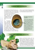 Krebse Und Garnelen - Tierbedarf Belitz - Seite 4
