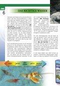 Krebse Und Garnelen - Tierbedarf Belitz - Seite 6