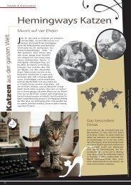 Seite 26 - ZOO & Co. Betz in Bretten