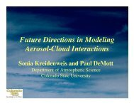 Future Directions in Modeling Aerosol-Cloud Interactions - cmmap