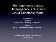 Homogeneous versus heterogenous SiB3 in a Cloud ... - cmmap