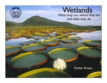 Wetlands - cmmap