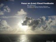 Focus on (Low) Cloud Feedbacks - cmmap