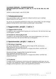 3. Spesialområder, pbl §25, 1. ledd nr. 6