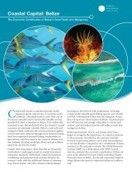 Coastal Capital: Belize - United Nations Sustainable Development