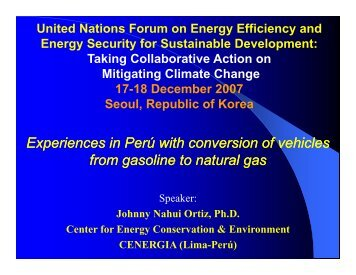 Johnny Nahui Ortiz, CENERGIA, Peru - United Nations Sustainable ...