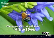 Attract Bees v2