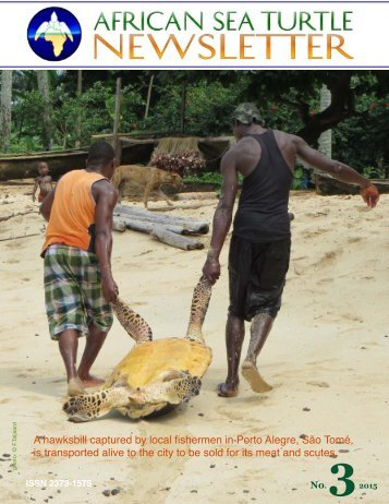 African+Sea+Turtle+Newsletter#3