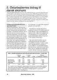 5. Østarbejdernes bidrag til dansk økonomi