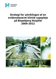 Strategi for udviklingen af en evidensbaseret klinisk sygepleje på ...
