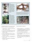 Skovdyrkeren Østjylland - Nr. 10 - Februar 2012 - Page 7