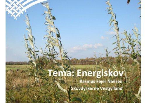 Tema: Energiskov - Skovdyrkerforeningen
