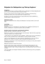Plejeplan for Mølleparken og Tåstrup Enghave - Høje-Taastrup ...