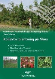 Kollektiv plantning på Mors - Skovdyrkerforeningen