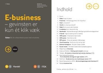 E-business - DI Handel