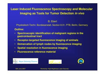 Laser Induced Fluorescence Spectroscopy and ... - brighter.eu