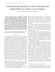 Automated and Interactive Lesion Detection and Segmentation in ...