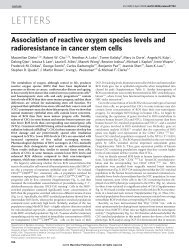 Association of reactive oxygen species levels and radioresistance in ...