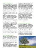 SWR4 - Fastenwoche 2004 - Wissen-gesundheit.de - Page 5