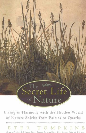 The Secret Life of Nature - michaeljgoodnight.com