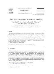 Biophysical constraints on neuronal branching
