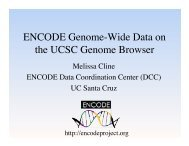 ENCODE Genome-Wide Data on the UCSC Genome Browser