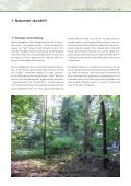 Naturnær skovdrift – idekatalog til konvertering - Naturstyrelsen - Page 7