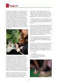 Cittaslow-stafetten - Page 4