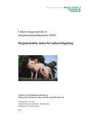 Hygiejneledelse inden for industrislagtning - khru.dk