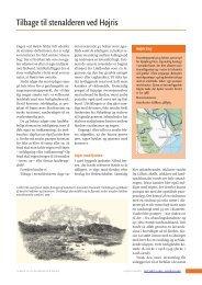 Tilbage til stenalderen ved Højris - Det tabte land