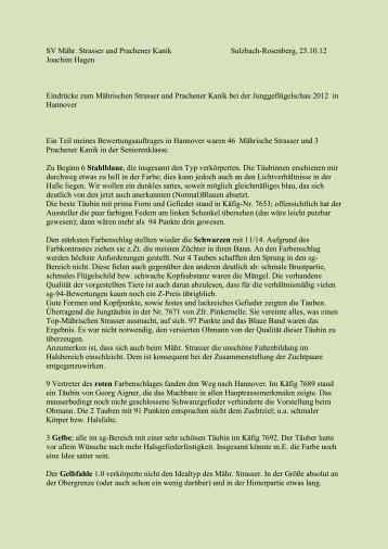 Bericht PDF - sv-maehrischer-strasser-und-prachener-kanik.de