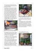 Hent bladet i pdf-format - Strandvejskvarteret - Page 7