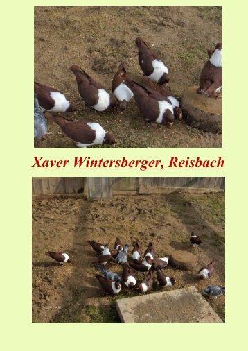 Wintersberger Xaver - sv-maehrischer-strasser-und-prachener-kanik ...