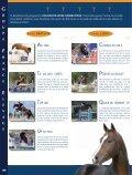 kannan - Élevage   Cavadeos.com - Page 4